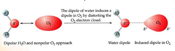 induction forces