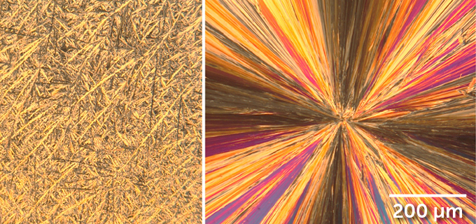 deltamethrin crystals in typical insecticide spray (left) and a new version (right)